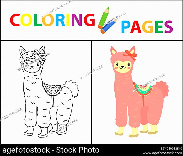 Coloring book page for kids. Cute Lama. Sketch outline and color version. Childrens education. illustration