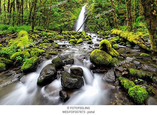 USA, Oregon, Hood River County, Columbia River Gorge, Ruckel Creek Falls