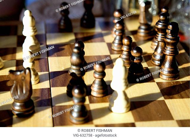 Chess - Chessmen. - BIELEFELD, NORTH RHINE-WESTPHALIA, GERMANY, 20/02/2008