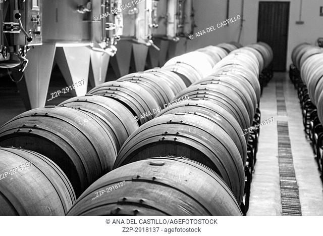 Cellar interior in La Mancha Albacete Spain Los Aljibes vinery on February 12, 2017