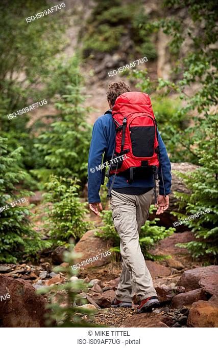Man hiking with red backpack, San Juan Mountains near Ouray, Colorado