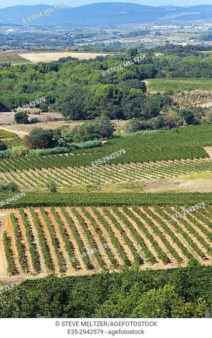 Herault River valley vineyards looking towards Alignon du Vent from Valros, France