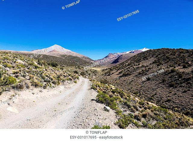 Small path in the Andes. The weather Andean Highlands Puna grassland ecoregion, of the montane grasslands and shrublands biome. Park Sajama, Bolivia