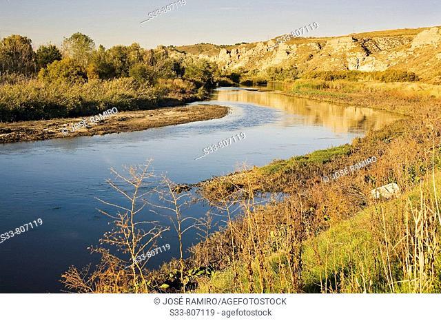 Rio Jarama a su paso por Titulcia. Madrid province. Spain