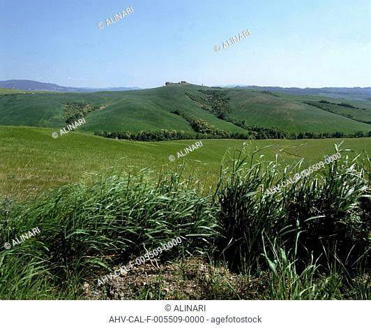 The countryside around Peccioli, on the outskirts of Pontedera, shot 1994 by Tatge, George for Alinari