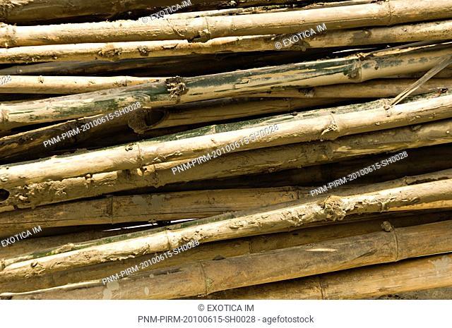 Close-up of firewood, Kolkata, West Bengal, India