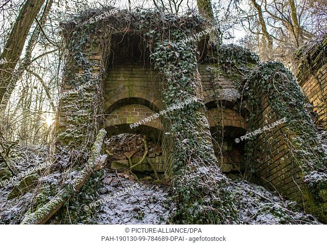 29 January 2019, Brandenburg, Sauen: The ivy overgrown and partly collapsed building of the old steam brickworks. The Philipp Holzmann & Cie