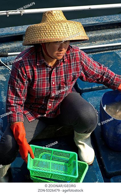 Chinesische Fischhändlerin mit Strohhut, Sai Kung Stadt, Hongkong / Chinese female fish monger with a straw hut, Sai Kung town, Hong Kong
