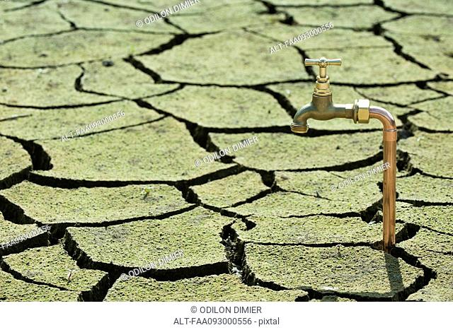 Faucet emerging from dry, cracked earth