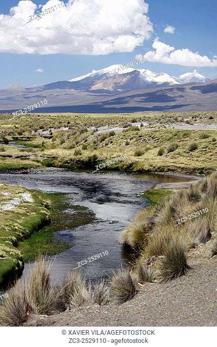 Landscape of the National park of Sajama, with river and mountain, old volcano with snow, Altiplano Bolivia