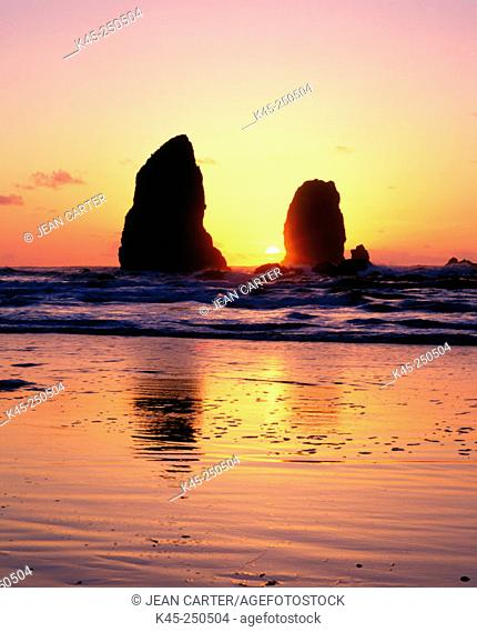 The Needles silhouetted at sunset. Cannon Beach. Oregon. USA
