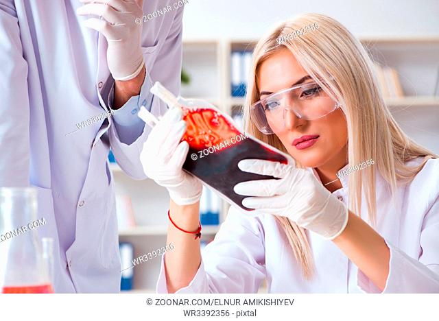 Woman female doctor looking at blood samples in bag