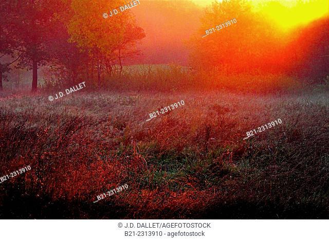 Sunrise in autumn at Carsac, Dordogne, Aquitaine, France