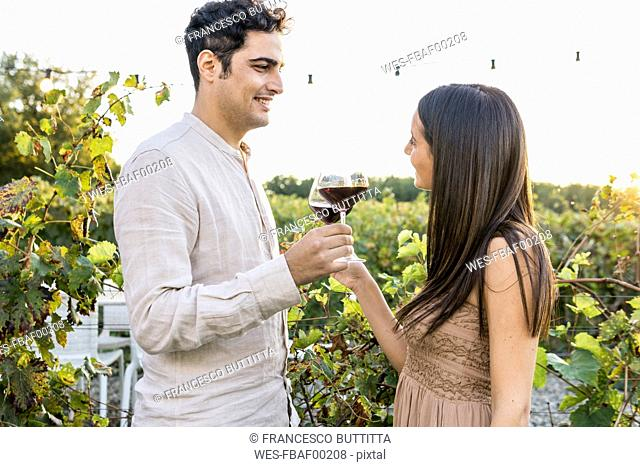 Italy, Tuscany, Siena, smiling young couple clinking red wine glasses in a vineyard