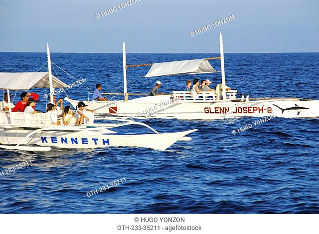 Whale watching tour, Bohol, Philippines