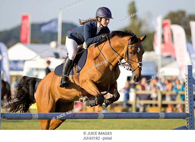 Female Showjumper clearing jump on horse
