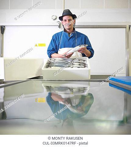 Worker packing mackerel in plant