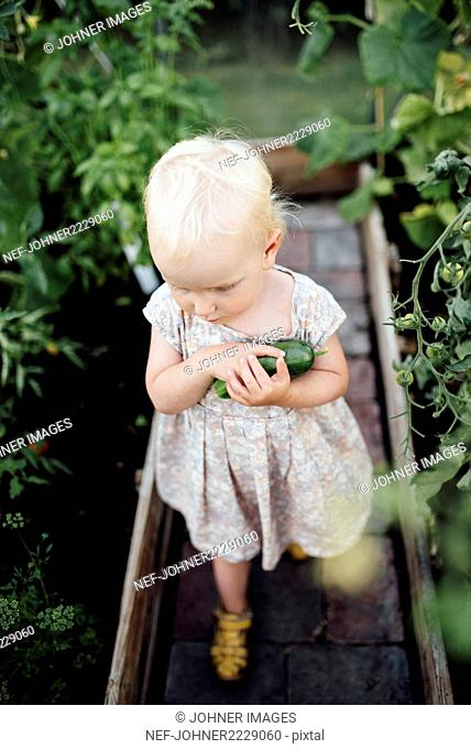 Girl in greenhouse holding cucumber