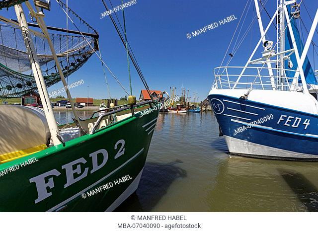 fishing boat in the port of Fedderwardersiel, Butjadingen, municipality in the administrative district of Wesermarsch