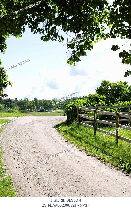 Dirt road winding through countryside