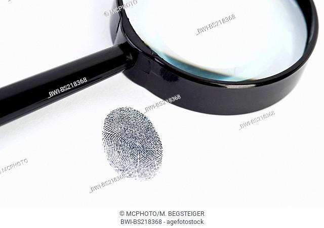 fingerprint under loupe