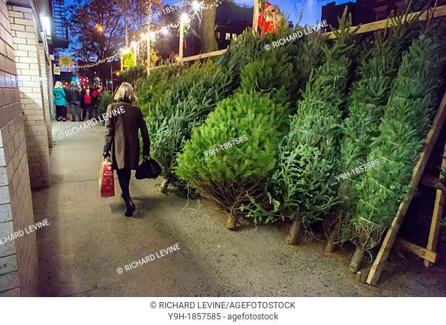 Christmas trees for sale in the New York neighborhood of Chelsea There is wide disparity between tree prices between neighborhoods with the same tree going from...