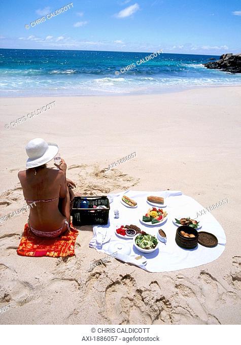 Woman Enjoying A Picnic On The Beach
