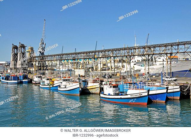 Fishing boats, Waterfront, Cape Town, South Africa, Africa