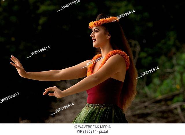 Hawaii hula dancer in costume dancing