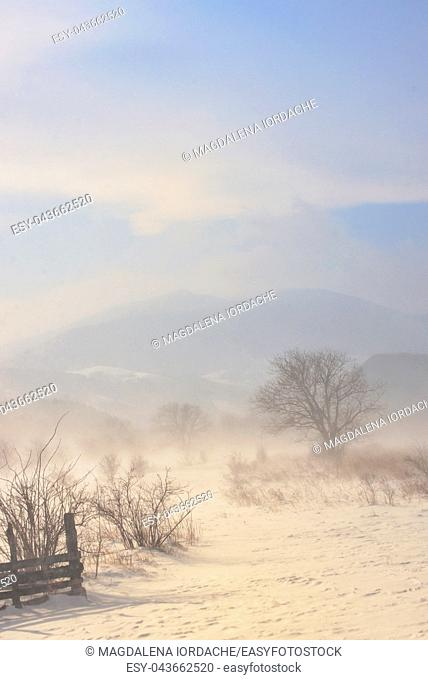Winter field in a storm in Romania mountains