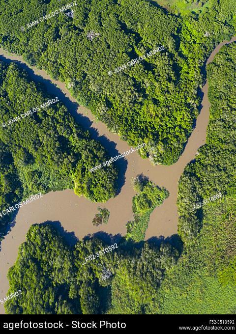 San Cristobal river, Bird sanctuary, San Blas Town, Matanchen Bay, Pacific Ocean, Riviera Nayarit, Nayarit state, Mexico, Central America, America