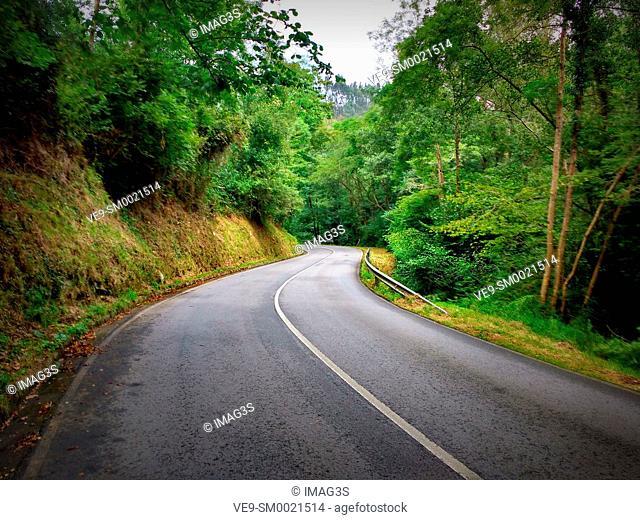 Road to Tazones, Villaviciosa municipality, Asturias, Spain