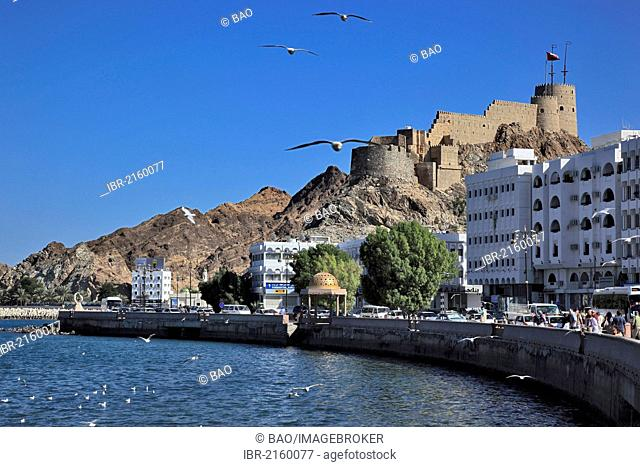 Corniche of the Muttrah district, Muscat, Oman, Arabian Peninsula, Middle East, Asia