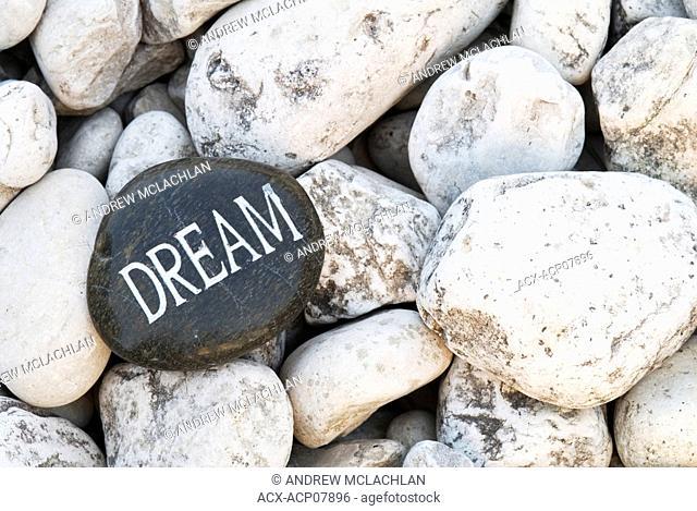 Inspirational dream rock on cobble stone, Ontario, Canada