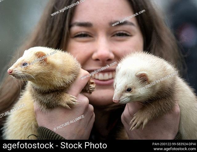 "22 January 2020, North Rhine-Westphalia, Dortmund: Maren Wethmar shows her ferrets """"Hanni"""" and """"Nanni"""" in front of """"Jagd & Hund"""" and """"Fisch & Angel""""..."