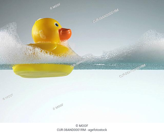 Rubber duck floating in soapy water