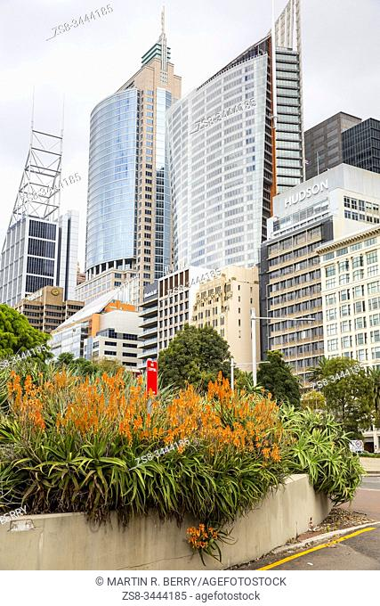 Sydney office towers on Macquarie street in the City centre