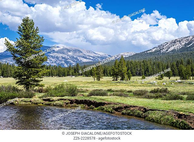 View of Tuolumne Meadows, mountains, and clouds. Yosemite National Park, California, United States