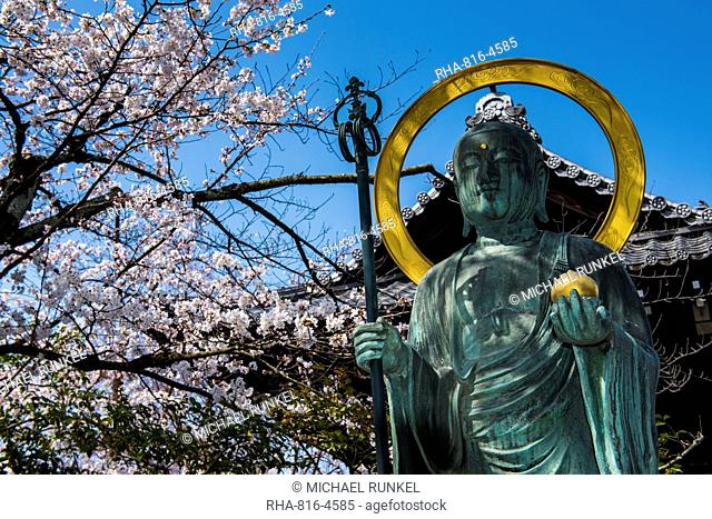 Statue in the cherry blossom in the Maruyama-Koen Park, Kyoto, Japan, Asia