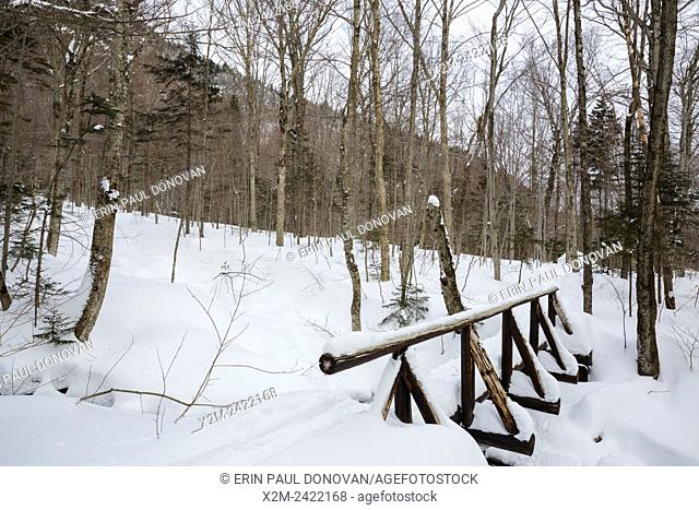 Foot bridge along the Appalachian Trail (Beaver Brook Trail) in Kinsman Notch of the White Mountains, New Hampshire USA during the winter months