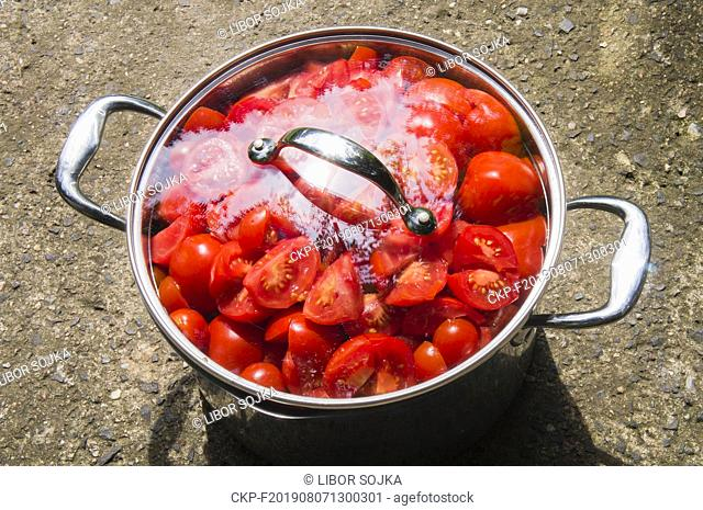 steel cooking pot full of red tomato, cut tomatoes, agriculture, vegetable, no people, freshness, botany, organic, healthy eating, food and drink, August 6