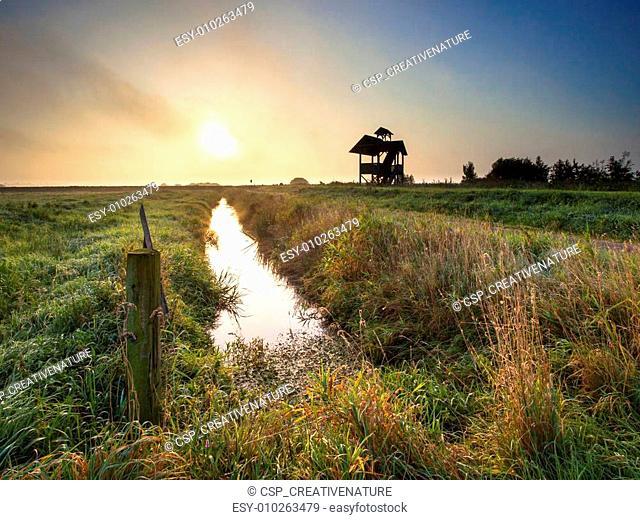 Polder Landscape Zuidlaardermeer