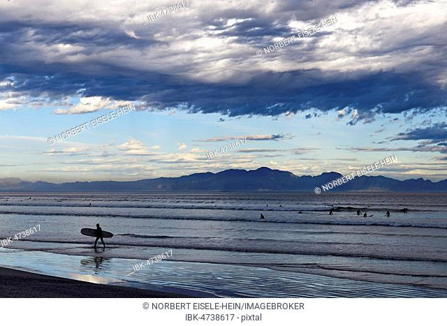 Surfers at the beach of Muizenberg, Cape Town, Western Cape, South Africa