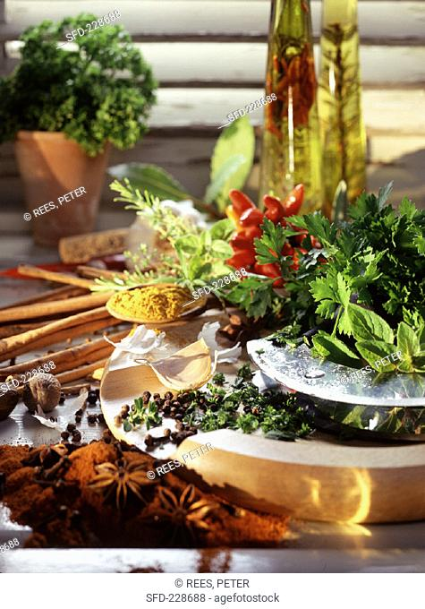 Still life with fresh herbs, spices and oil (1)