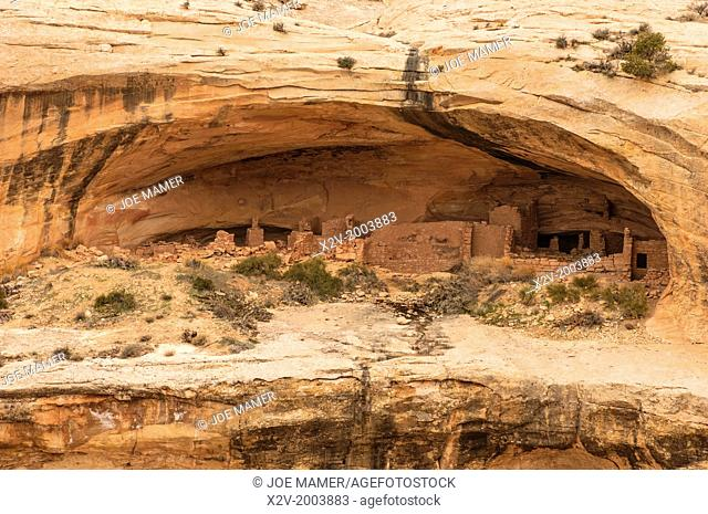 Butler Wash Anasazi ruins at Cedar Mesa. The cliff dwellings in this area were built and occupied by the Anasazi about 1200 A.D