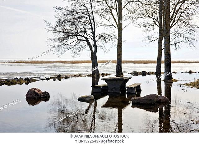Flooded River Emajõgi and Trees Silhouettes in Rannu Jõesuu by Lake Võrtsjärv, Estonia