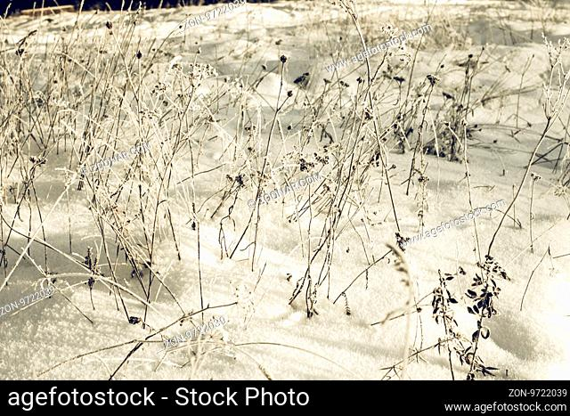 Abstract Winter background, Winter Outdoor Scene, Happy New Year and Merry Christmas Background for a Greeting or Message about Promotions and Sales
