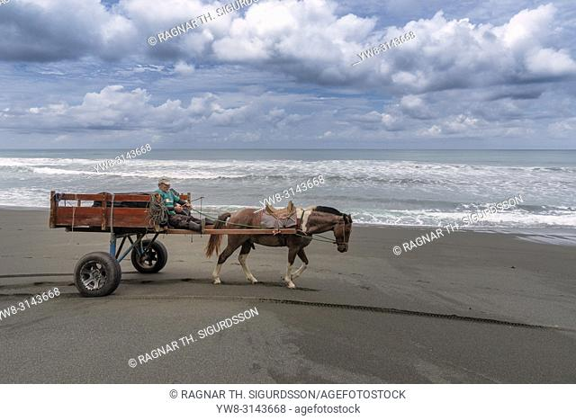 Man using a horse and cart on the beach, Osa Peninsula, Costa Rica