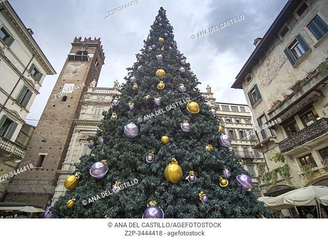 Verona Veneto Italy on November 24, 2019: Christmas in Verona streets. Piazza delle Erbe with the Christmas tree