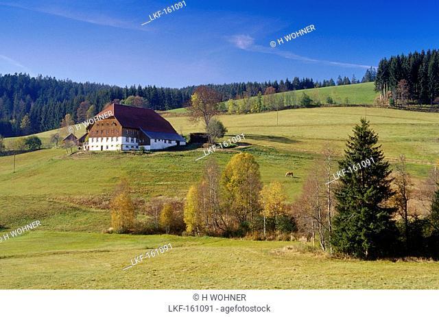 Farm near Furtwangen, Black Forest, Baden-Wurttemberg, Germany